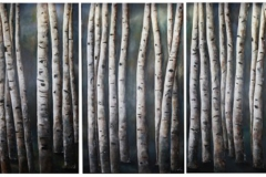 cardello_birches